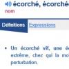 Ecorche.jpg