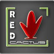 L'équipe RedCactus