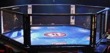 MMA.jpg.8af0caa30ca1d137f6f8943ff43ff8ee.jpg