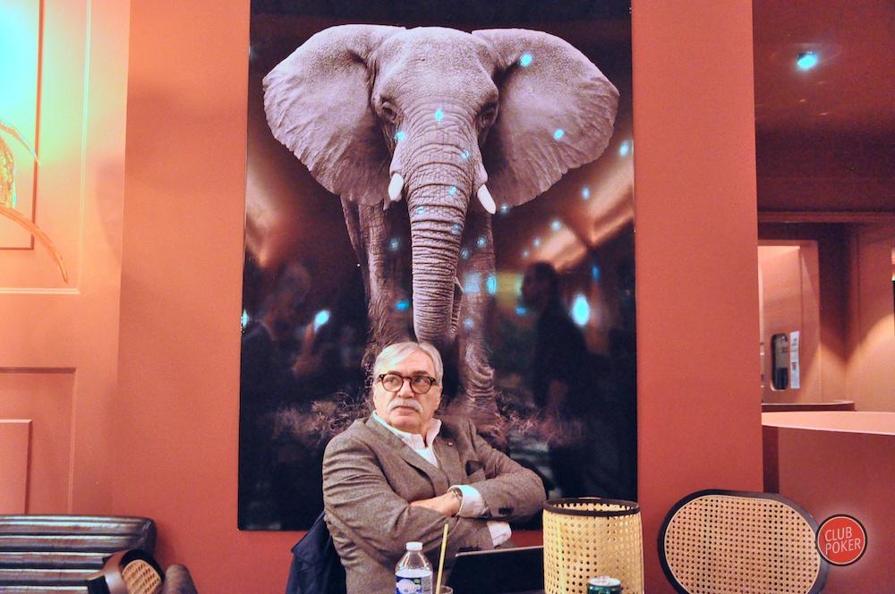 large.apo_elephant.JPG.dc0584d6df6da580a