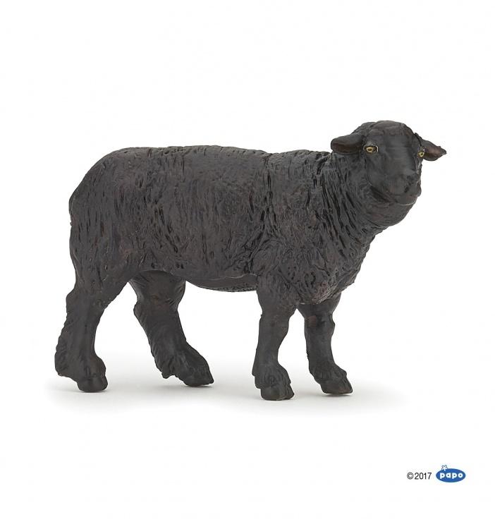 mouton-noir.thumb.jpg.37e02115bb4b4422431b4bb2e5781c2e.jpg