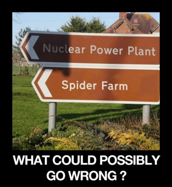 nuclear-spider-what-could-possibly-go-wrong.jpg
