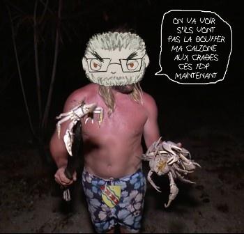 gege_crabes.jpeg