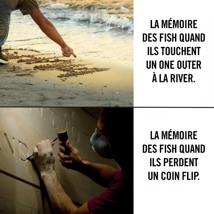 fishs.png