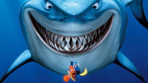 requin-99979.jpg