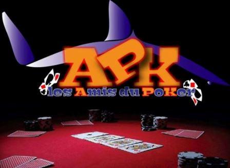 Logo APK TEAM