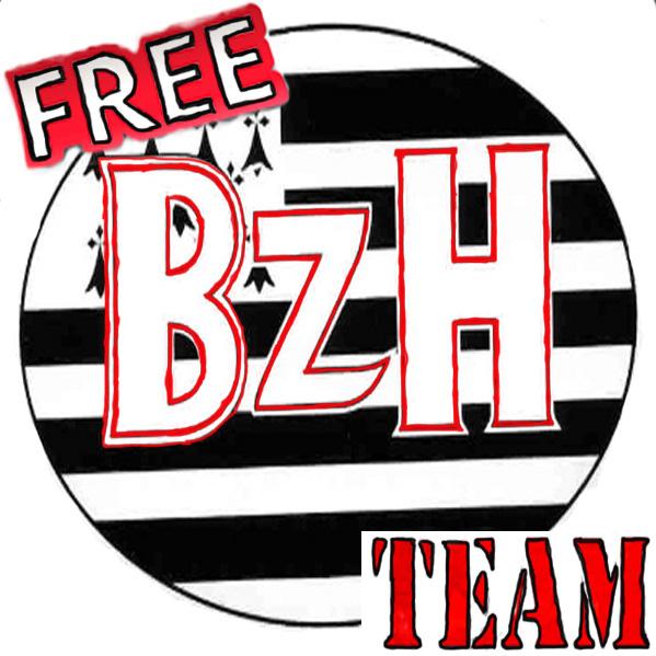 Logo FREE BZH
