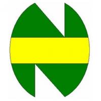 Logo New Team Poker